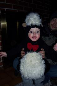 Finley the Skunk