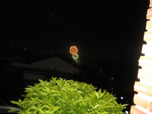 Finley took this picture of the fireworks.