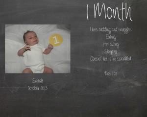 Saviah 1 month stats